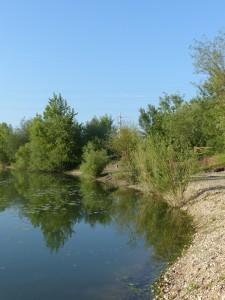 Zagreb Lake 2