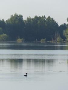 Zagreb Lake